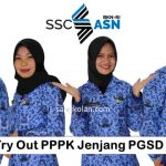 Try Out PPPK Jenjang PGSD
